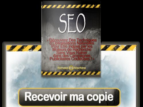 SEO (PDF avec droit de revente maître)