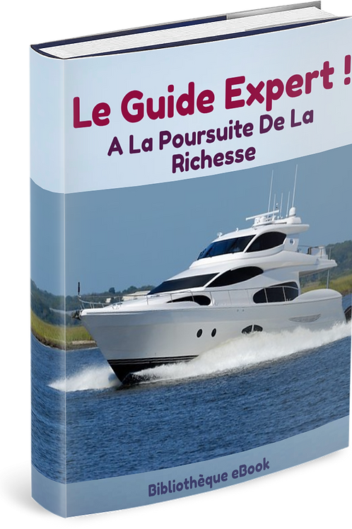 Le Guide experts : A la poursuite de la richesse (PDF DLP)