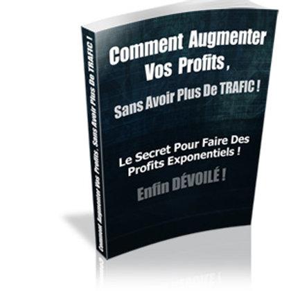 Comment Augmenter Vos Profits , Sans Avoir Plus de Trafic !(PDF)