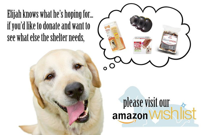 **NEW**  Our very own Amazon Wish List