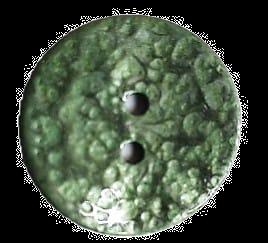Botón B656