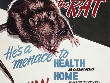 Albertan Rat-Nazis