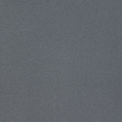 ES581 Metallic Sleeksilver