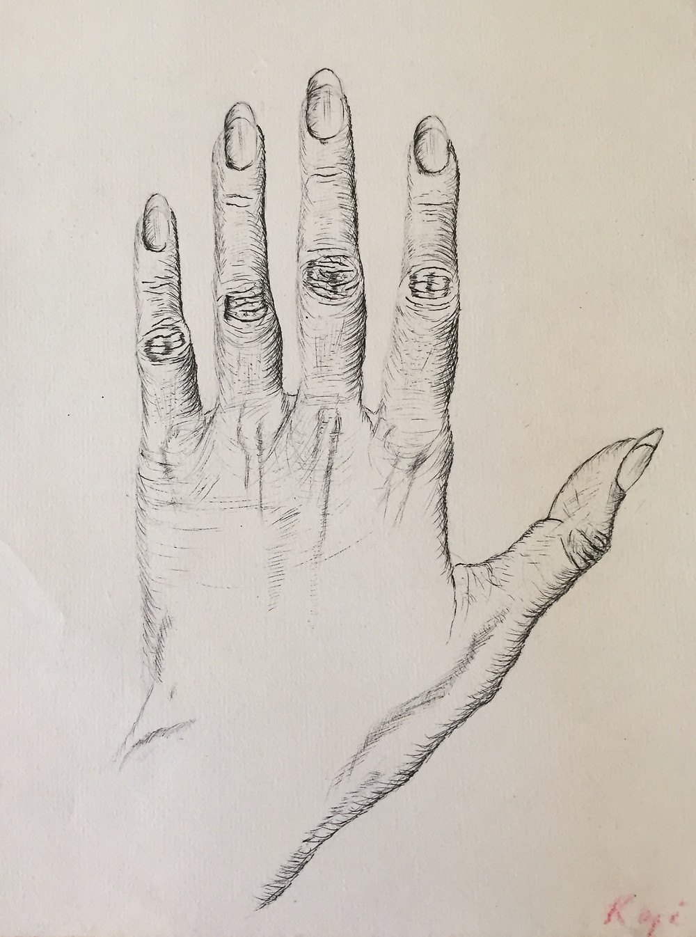 My hand, pen and ink, circa 1988, drawn for an art class with Elliot Offner.