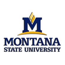 Montana State Logo.png