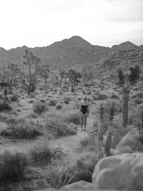 Melodie Perrault Desert