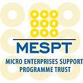 MESPT logo.jpg