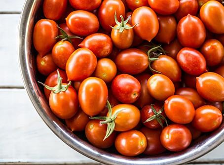 מה כל כך מיוחד בעגבניות?