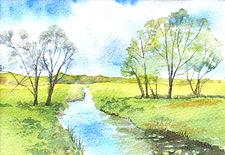 River Nene.jpeg
