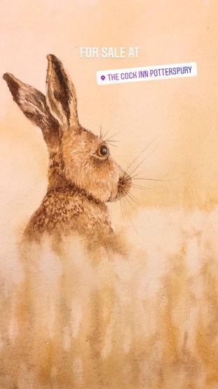 Hare 3.jpeg