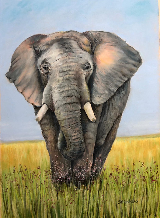 Elephant 3.jpeg