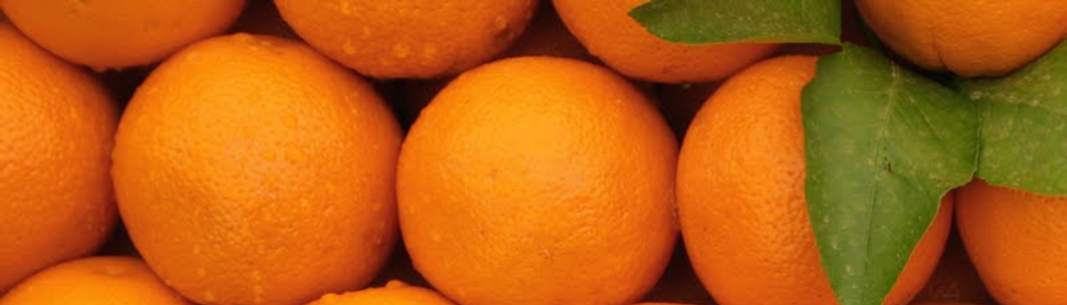 cropped-cropped-Oranges.png