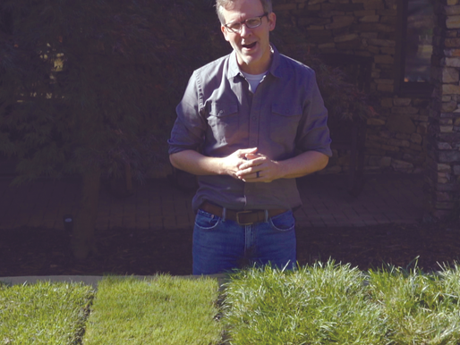 Are You Growing The Right Type of Grass?