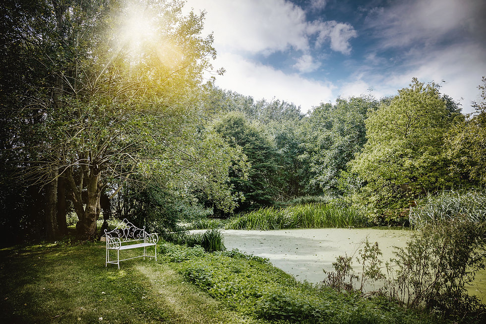 Worton_Hall_pond_area_Vicky_Lewis_Photog