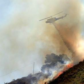 🔥 Incendies en Algérie, Grèce, Italie et Turquie - Comment soutenir les victimes ? 🤝