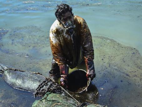 Marée noire à l'île Maurice : Comment aider ?