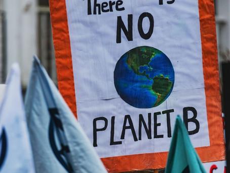 La Journée Mondiale de l'Environnement ♻️  - Comment soutenir et s'engager ? 🤝