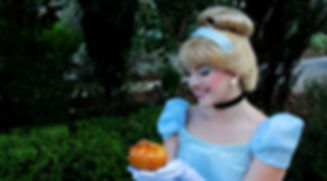 Cinderella princess party los angeles ventura county santa barbara