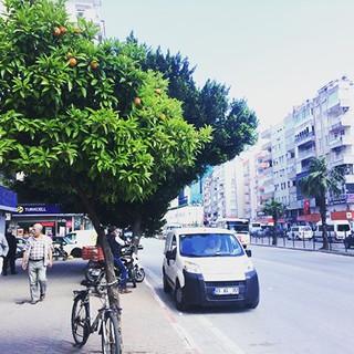 アンタルヤ中心部の大通り風景。