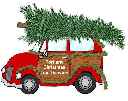 Tree Haul Away Service