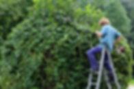 landscape-gardener.jpg