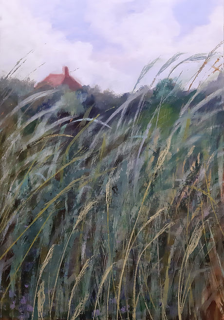 July grasses in garden (1).jpg