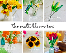 multi bloom box.png