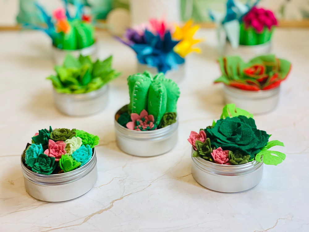 Felt Cactus and Succulents