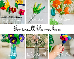 small bloom box.png