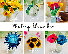 large bloom box.png