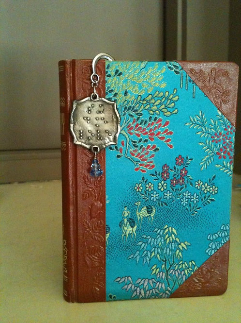"""Sing, Dance, Love"" Book Hook"