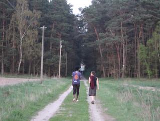 Auf nach Narnia!