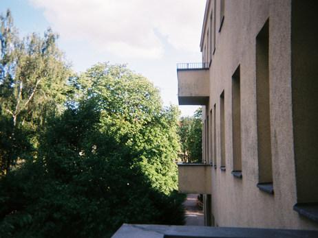 Der Blick von meinem sehr kleinen Balkon in die Gärten. Ich wohne an einer großen Straße, aber hier bekommt man davon nichts mit.