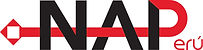 Logo NAPeru (Negros).jpg