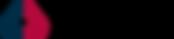 Logo ENGINEERING.png
