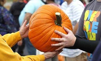 Pumpkin Unloading.jpg