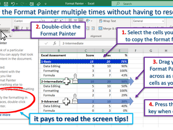 Excel Tip - Using the Format Painter multiple times
