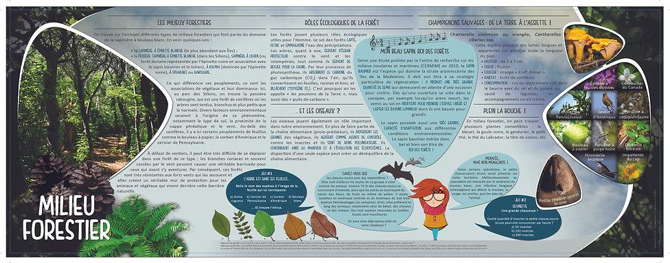 MilieuForestier.jpg