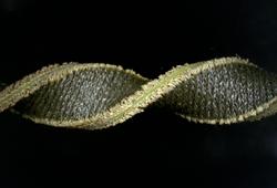 Hybrid Textile Silicone Sensor