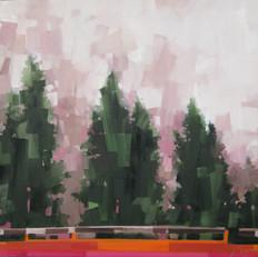 """Cedar Fog 2 of 2 – oil on canvas – 34"""" x 34"""" – $3,350"""