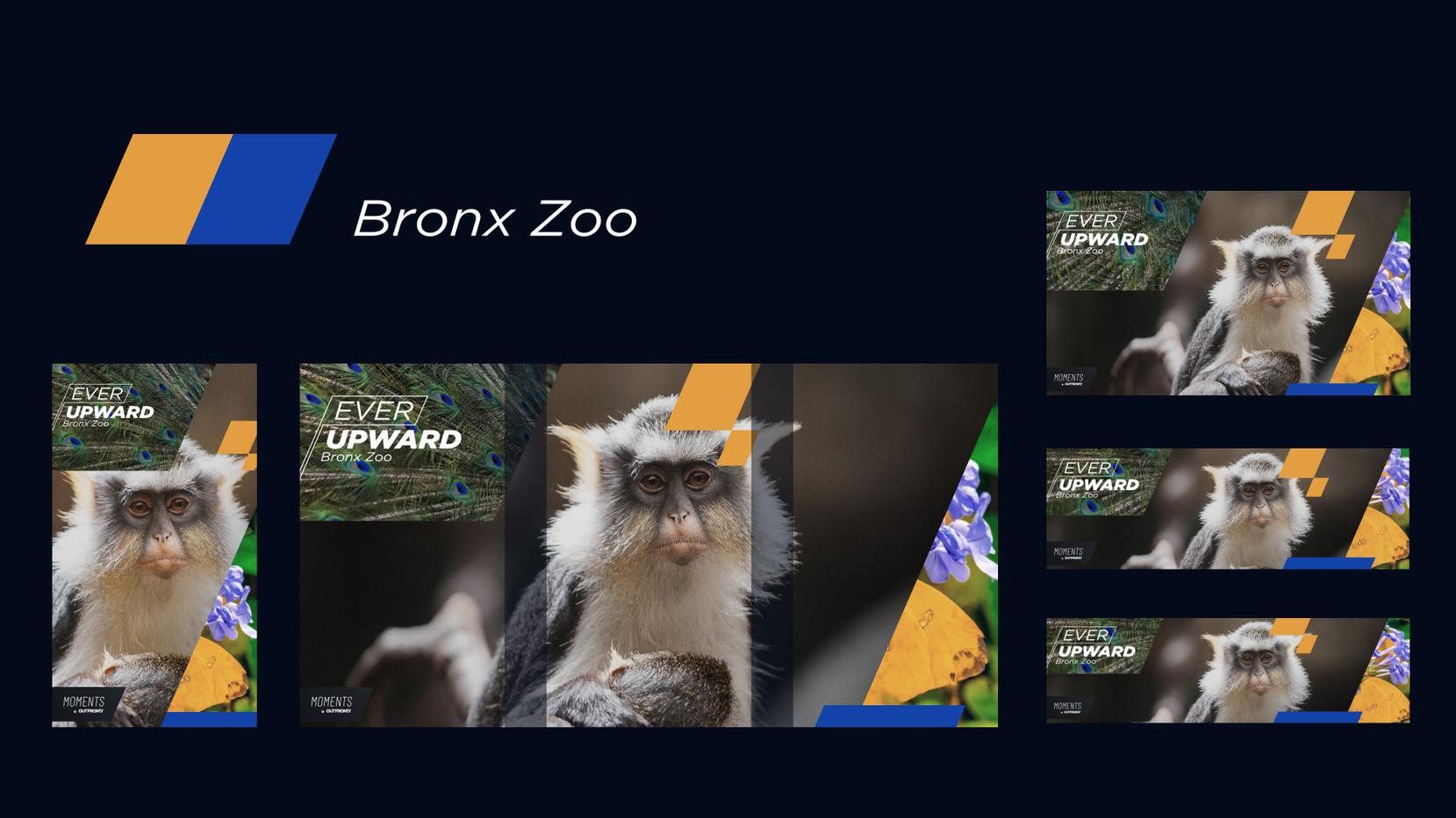 _ce_bx_zoo (0;00;07;15).jpg