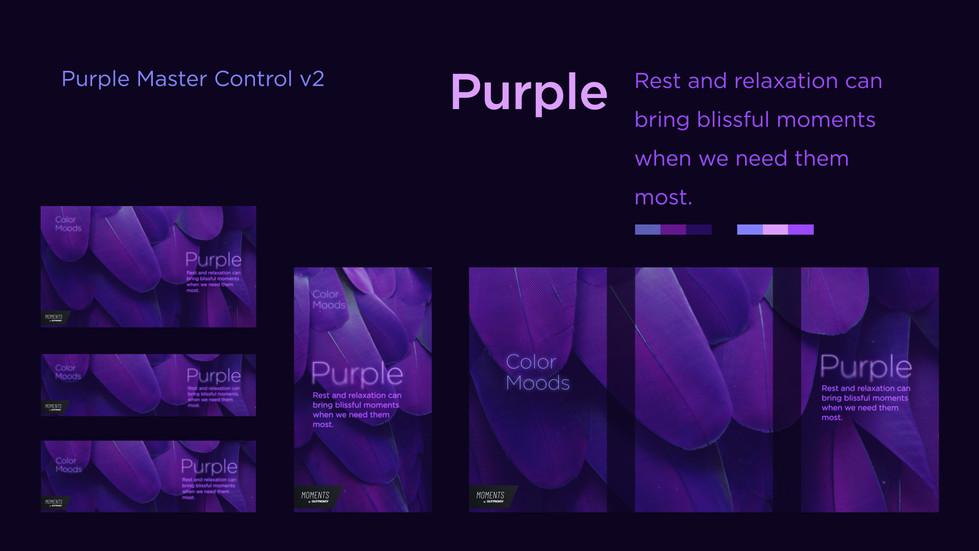Purple Master Control (0;00;07;15).jpg