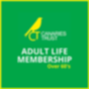 Membership CT Website Life O60's.png