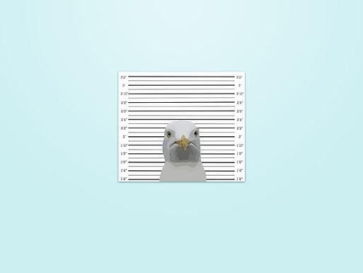Seagull Mugshot Matte Sticker - Hand drawn