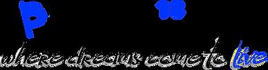 H18 Pro Logo blk.png