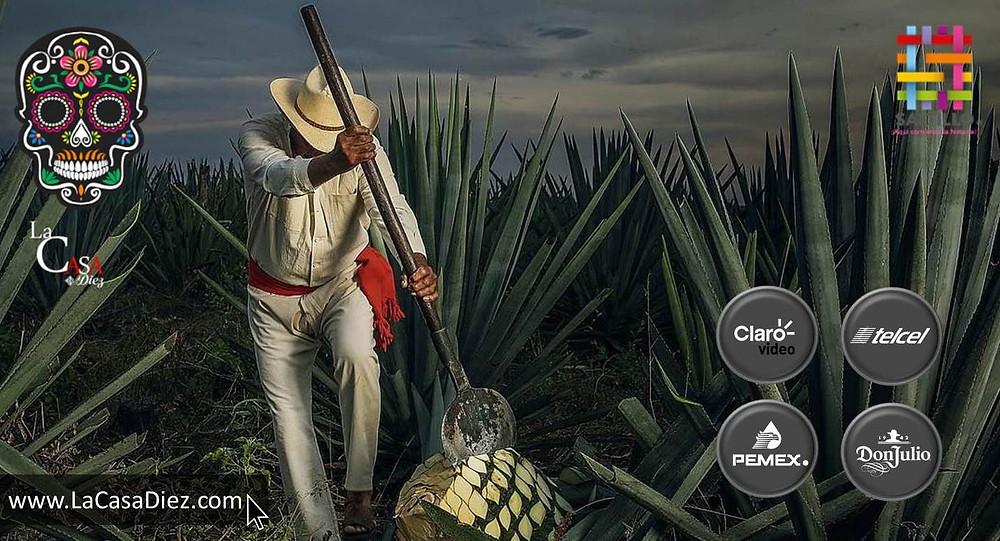 Marcas más importantes en México