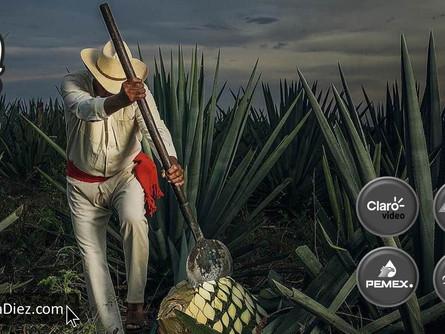 El Tequila Don Julio, entre las Marcas más importantes en México.