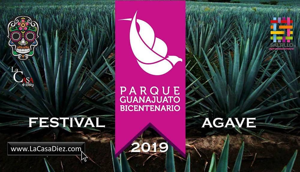 Septimo Festival del Agave en Guanajuato