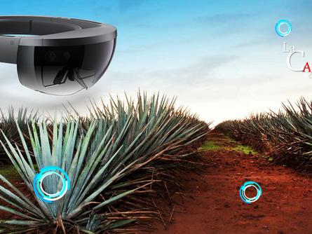 La realidad aumentada sobre los Agaves  con los HoloLens.