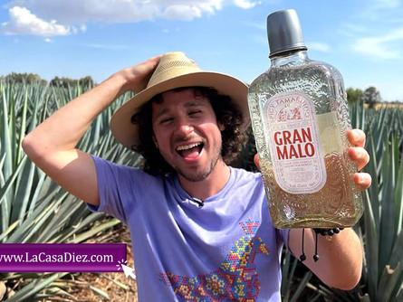 TEQUILA GRAN MALO, el destilado sabor Tamarindo del Youtuber Luisito Comunica